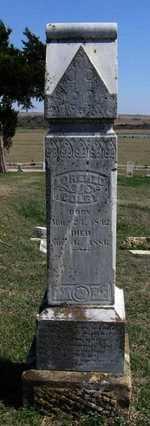 COLBY, LORENZO - Chautauqua County, Kansas   LORENZO COLBY - Kansas Gravestone Photos