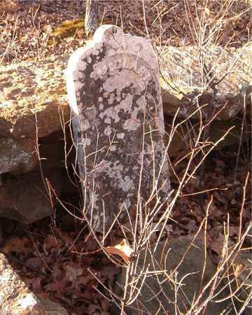 MCCLARNEY, M - Chautauqua County, Kansas | M MCCLARNEY - Kansas Gravestone Photos