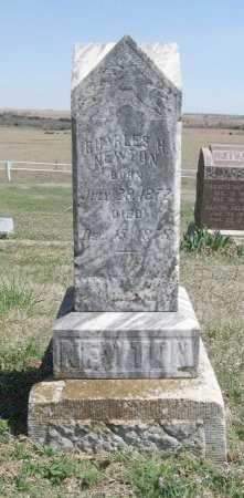 NEWTON, CHARLES H - Chautauqua County, Kansas | CHARLES H NEWTON - Kansas Gravestone Photos