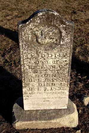 BETTY, LIDDIE A - Cherokee County, Kansas   LIDDIE A BETTY - Kansas Gravestone Photos