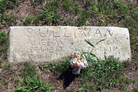 SULLIVAN, ALICE - Cherokee County, Kansas | ALICE SULLIVAN - Kansas Gravestone Photos