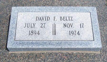 BELTZ, DAVID F (VETERAN WWI) - Cowley County, Kansas | DAVID F (VETERAN WWI) BELTZ - Kansas Gravestone Photos
