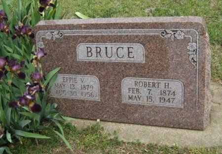 BRUCE, EFFIE VIOLA - Cowley County, Kansas | EFFIE VIOLA BRUCE - Kansas Gravestone Photos