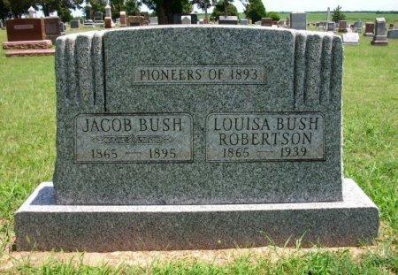 ROBERTSON, LOUISA BUSH - Cowley County, Kansas   LOUISA BUSH ROBERTSON - Kansas Gravestone Photos