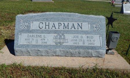 CHAPMAN, DARLENE LAVONN - Cowley County, Kansas | DARLENE LAVONN CHAPMAN - Kansas Gravestone Photos