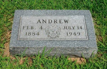 JOHNSON, ANDREW - Cowley County, Kansas | ANDREW JOHNSON - Kansas Gravestone Photos