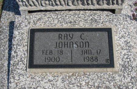 JOHNSON, RAY C - Cowley County, Kansas | RAY C JOHNSON - Kansas Gravestone Photos