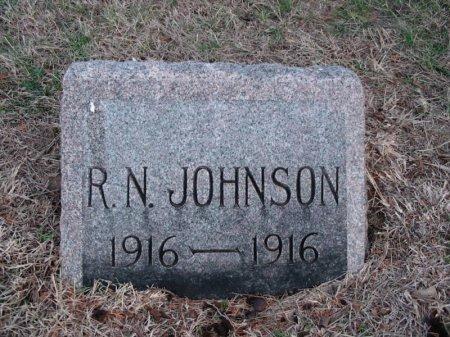 JOHNSON, RAYMOND N - Cowley County, Kansas | RAYMOND N JOHNSON - Kansas Gravestone Photos