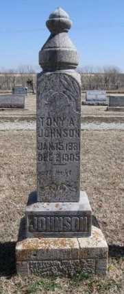 JOHNSON, TONY A - Cowley County, Kansas   TONY A JOHNSON - Kansas Gravestone Photos