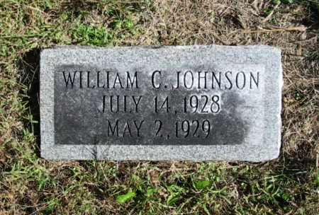 JOHNSON, WILLIAM CLIFFORD - Cowley County, Kansas | WILLIAM CLIFFORD JOHNSON - Kansas Gravestone Photos