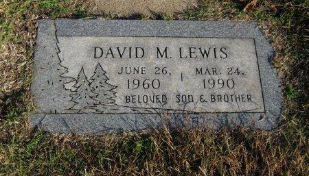 LEWIS, DAVID M - Cowley County, Kansas | DAVID M LEWIS - Kansas Gravestone Photos