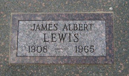 LEWIS, JAMES ALBERT - Cowley County, Kansas | JAMES ALBERT LEWIS - Kansas Gravestone Photos