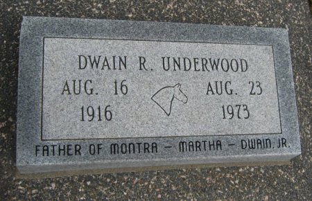 UNDERWOOD, DWAIN R - Cowley County, Kansas | DWAIN R UNDERWOOD - Kansas Gravestone Photos