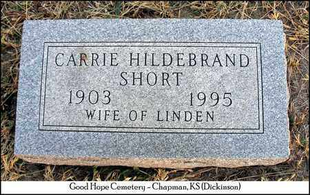 FREEMAN HILDEBRAND, CARRIE - Dickinson County, Kansas | CARRIE FREEMAN HILDEBRAND - Kansas Gravestone Photos