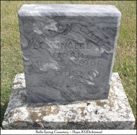 WINGERD, VERNON EARL - Dickinson County, Kansas | VERNON EARL WINGERD - Kansas Gravestone Photos