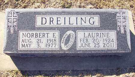 DREILING, NORBERT E - Ellis County, Kansas | NORBERT E DREILING - Kansas Gravestone Photos
