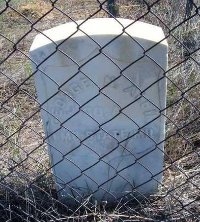ALBIN, GEORGE N  (VETERAN UNION) - Finney County, Kansas | GEORGE N  (VETERAN UNION) ALBIN - Kansas Gravestone Photos