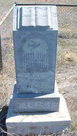 ALBIN, MARY H - Finney County, Kansas | MARY H ALBIN - Kansas Gravestone Photos