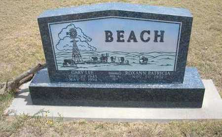 BEACH, GARY LEE - Finney County, Kansas | GARY LEE BEACH - Kansas Gravestone Photos