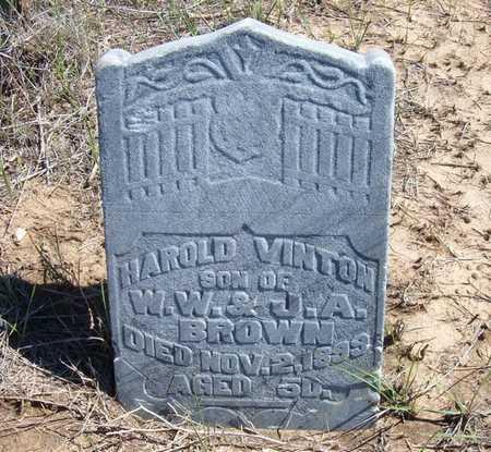 BROWN, HAROLD VINTON - Finney County, Kansas | HAROLD VINTON BROWN - Kansas Gravestone Photos