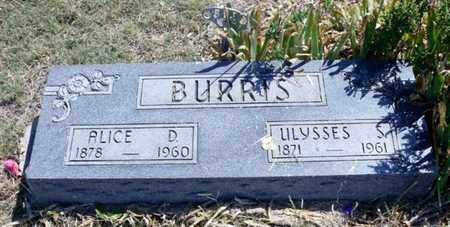 DURISCH BURRIS, ALICE DEFERNA - Gove County, Kansas | ALICE DEFERNA DURISCH BURRIS - Kansas Gravestone Photos