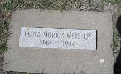 WEBSTER, LLOYD MORRIS - Gove County, Kansas   LLOYD MORRIS WEBSTER - Kansas Gravestone Photos