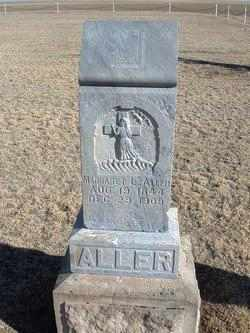 SMITHERS ALLER, MARGARET LAVINA - Grant County, Kansas | MARGARET LAVINA SMITHERS ALLER - Kansas Gravestone Photos