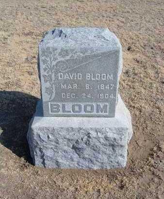 BLOOM, DAVID - Grant County, Kansas | DAVID BLOOM - Kansas Gravestone Photos