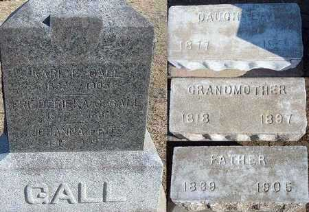 GALL, JOHANNA - Grant County, Kansas | JOHANNA GALL - Kansas Gravestone Photos