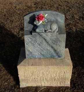 RIDER, INFANT SON - Grant County, Kansas | INFANT SON RIDER - Kansas Gravestone Photos