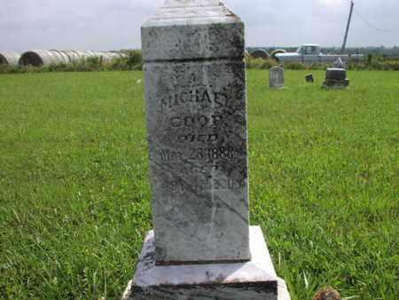 COOP, MICHAEL - Greenwood County, Kansas | MICHAEL COOP - Kansas Gravestone Photos
