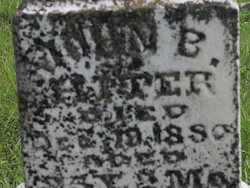 HATTER, JOHN B - Greenwood County, Kansas   JOHN B HATTER - Kansas Gravestone Photos