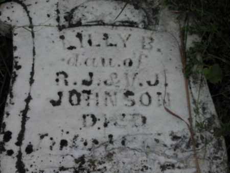 JOHNSON, LILLY B - Greenwood County, Kansas | LILLY B JOHNSON - Kansas Gravestone Photos