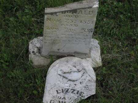 MCDONALD, LIZZIE - Greenwood County, Kansas | LIZZIE MCDONALD - Kansas Gravestone Photos