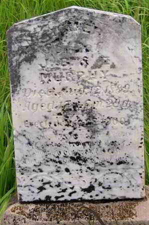 MURPHY, HOMER - Greenwood County, Kansas | HOMER MURPHY - Kansas Gravestone Photos