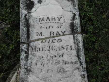 RAY, MARY ANN - Greenwood County, Kansas | MARY ANN RAY - Kansas Gravestone Photos