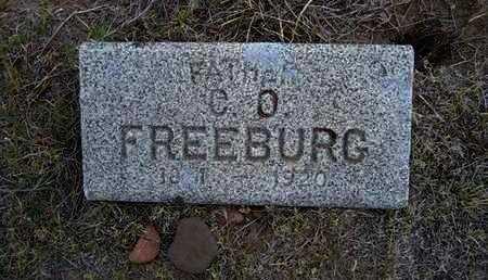 FREEBURG, C  O - Hamilton County, Kansas | C  O FREEBURG - Kansas Gravestone Photos