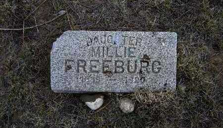 FREEBURG, MILLIE - Hamilton County, Kansas | MILLIE FREEBURG - Kansas Gravestone Photos