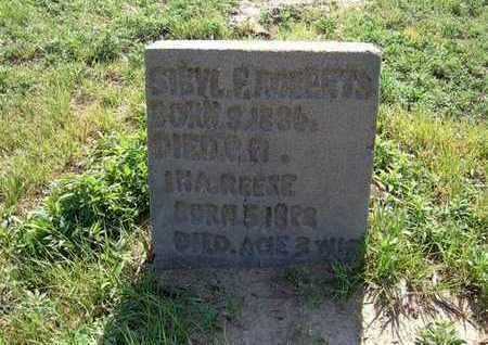 ROBERTS, SIBYL - Haskell County, Kansas | SIBYL ROBERTS - Kansas Gravestone Photos
