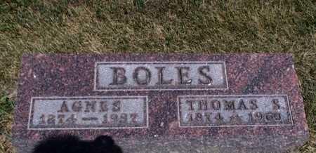 BOLES, AGNES - Jefferson County, Kansas | AGNES BOLES - Kansas Gravestone Photos