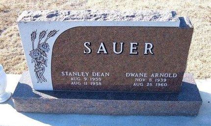 SAUER, STANLEY DEAN - Kearny County, Kansas | STANLEY DEAN SAUER - Kansas Gravestone Photos