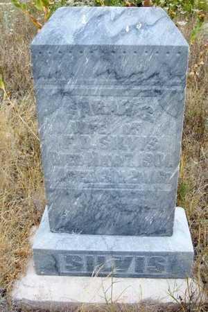 SILVUS, SARAH G - Kearny County, Kansas | SARAH G SILVUS - Kansas Gravestone Photos