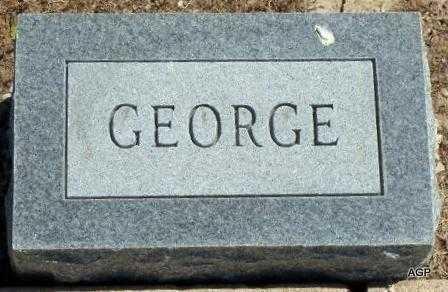 ACKERSON, GEORGE LEWIS - Labette County, Kansas   GEORGE LEWIS ACKERSON - Kansas Gravestone Photos