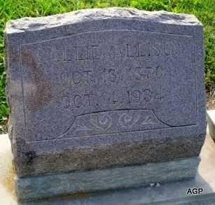 ALLISON, CALLIE - Labette County, Kansas   CALLIE ALLISON - Kansas Gravestone Photos