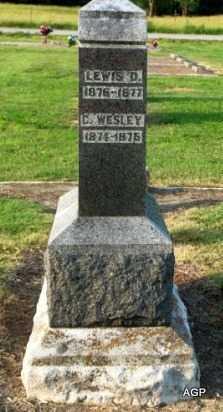 ANDERSON, LEWIS D - Labette County, Kansas | LEWIS D ANDERSON - Kansas Gravestone Photos