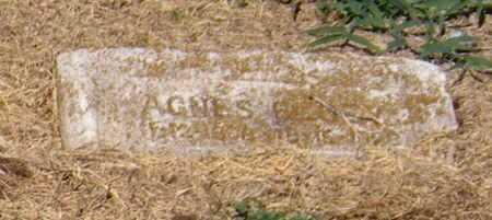 BEGEY, AGNES ANNA - Labette County, Kansas   AGNES ANNA BEGEY - Kansas Gravestone Photos