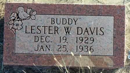 "DAVIS, LESTER W ""BUDDY"" - Labette County, Kansas | LESTER W ""BUDDY"" DAVIS - Kansas Gravestone Photos"