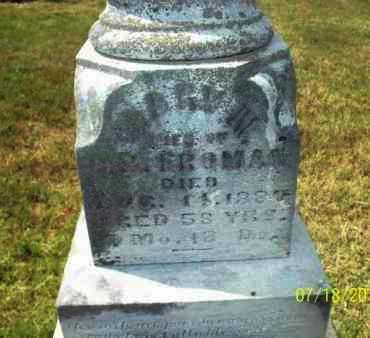 FROMAN, MARY N - Labette County, Kansas | MARY N FROMAN - Kansas Gravestone Photos