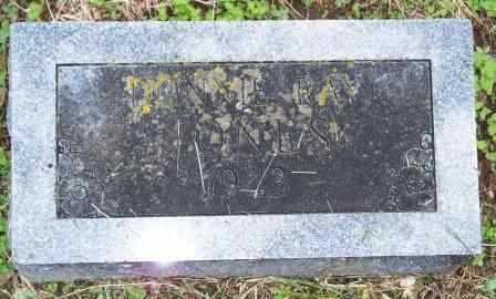 JONES, DONNIE RAY - Labette County, Kansas   DONNIE RAY JONES - Kansas Gravestone Photos