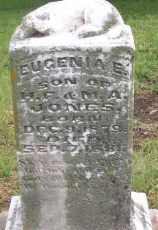 JONES, EUGENIA E - Labette County, Kansas | EUGENIA E JONES - Kansas Gravestone Photos